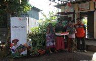 Bersama Rumah Zakat, Posyandu Lestari Ciptakan Kebun Produktif