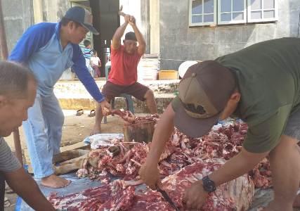 LDII Tanah Laut, Sembelih 75 Hewan Kurban Untuk Masyarakat