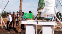 Kadishut Kalsel, Jokowi Tanam Pohon Endemik Mersawa