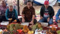 Festival buah lokal di desa Marajai kecamatan Halong