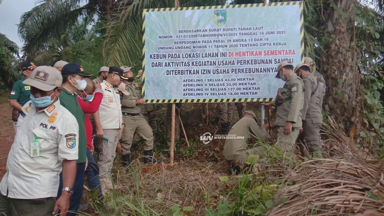 Tak Miliki IUP Sejak 2005, 4 Afdeling PTPN XIII disegel Pemkab Tala